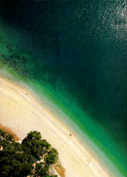 [ IMAGE: Brela - one of